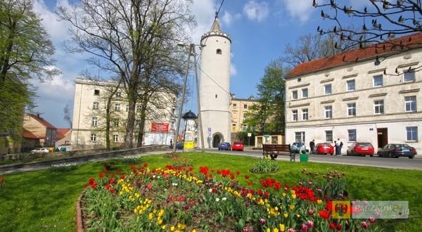 Foto: UM Paczków