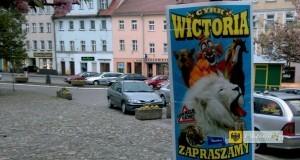Plakat Cyrku Wictoria